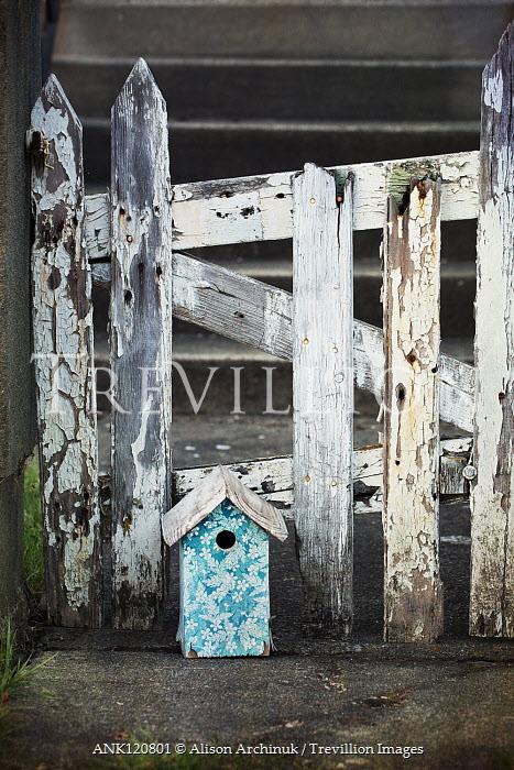 Alison Archinuk BIRDHOUSE BY PEELING WHITE PICKET FENCE Gates
