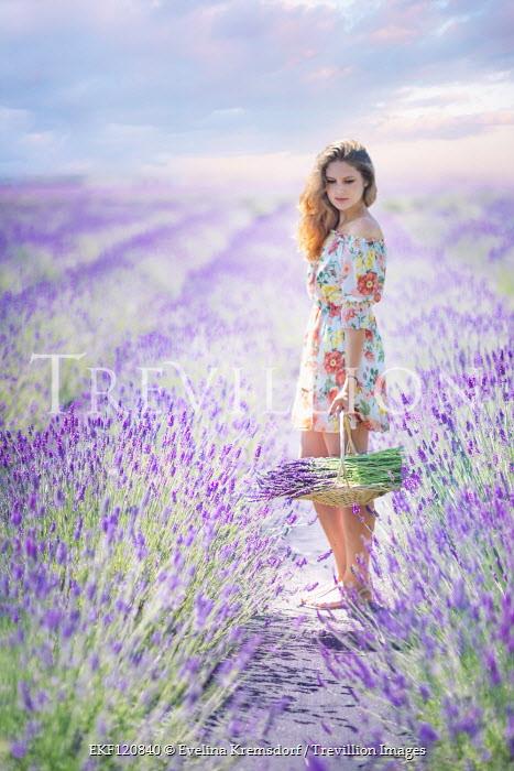 Evelina Kremsdorf GIRL IN FLORAL DRESS PICKING LAVENDER IN FIELD Women
