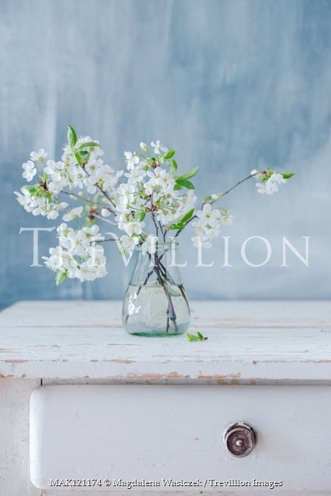 Magdalena Wasiczek Vase of white flowers on wooden table