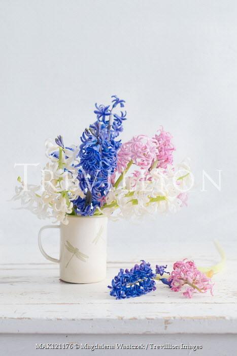 Magdalena Wasiczek Hyacinths on white table