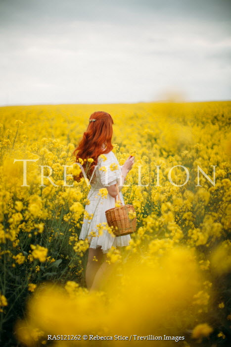 Rebecca Stice GIRL WITH RED HAIR IN FIELD OF YELLOW FLOWERS Women