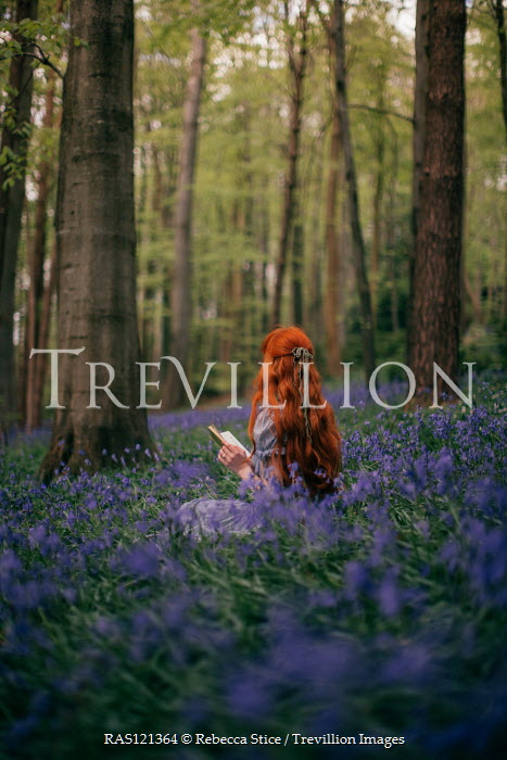 Rebecca Stice WOMAN WITH RED HAIR READING IN BLUEBELL FOREST Women
