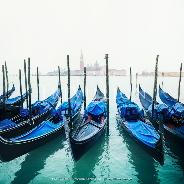 Evelina Kremsdorf Gondolas in Venice, Italy