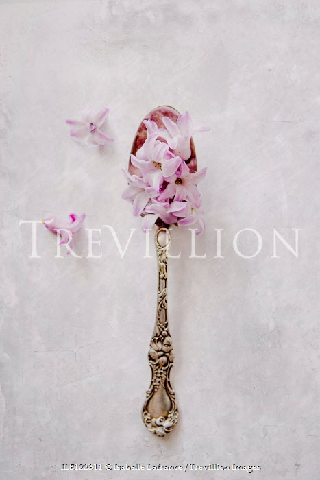 Isabelle Lafrance Tea spoon with pink flowers