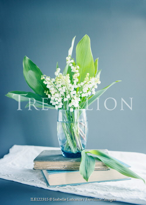 Isabelle Lafrance Lily of the valley in vase