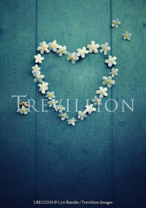 Lyn Randle WHITE FLOWERS IN HEART-SHAPE Flowers