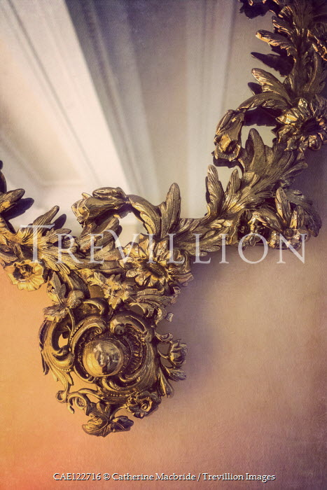 Catherine Macbride Ornate antique mirror