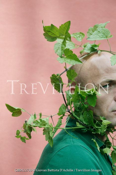 Giovan Battista D'Achille Bald man with vines