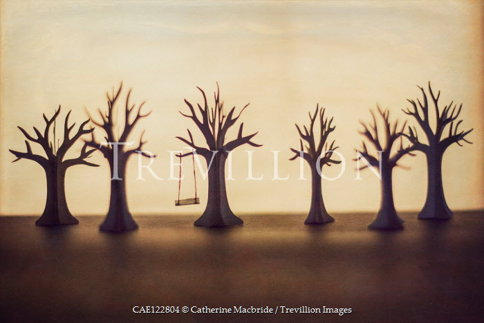 Catherine Macbride Paper trees with swing