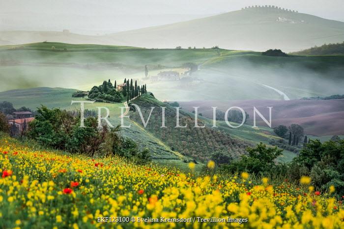 Evelina Kremsdorf VILLA IN SUMMERY ITALIAN RURAL LANDSCAPE Fields