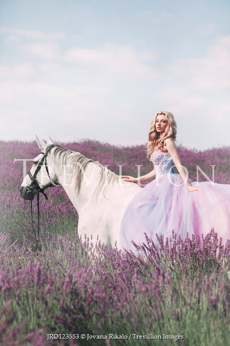 Jovana Rikalo BLONDE WOMAN ON WHITE HORSE IN LAVENDER FIELD Women
