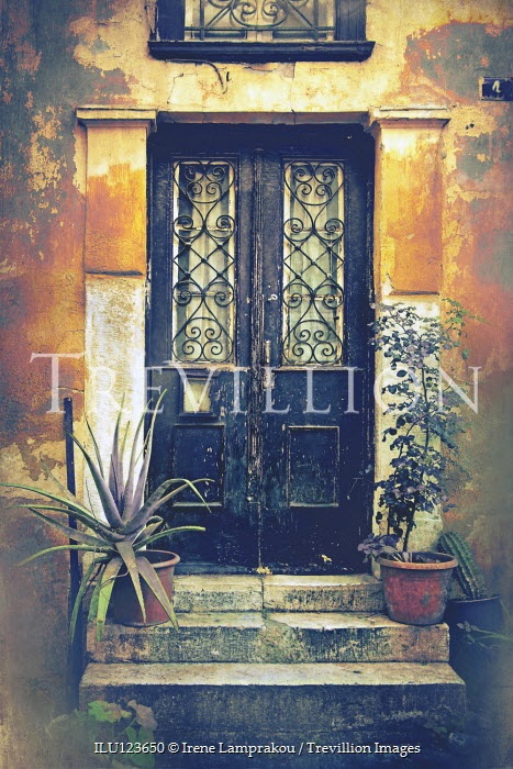 Irene Lamprakou WEATHERED DOOR OF OLD HOUSE WITH PLANTS Building Detail