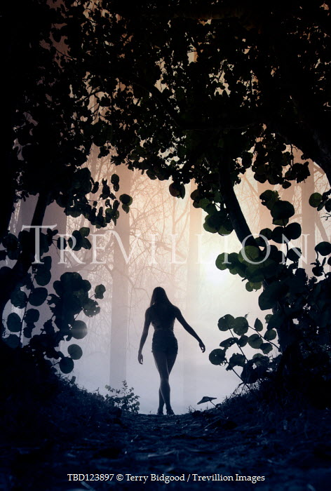 Terry Bidgood SILHOUETTED GIRL IN FOREST AT DUSK Women