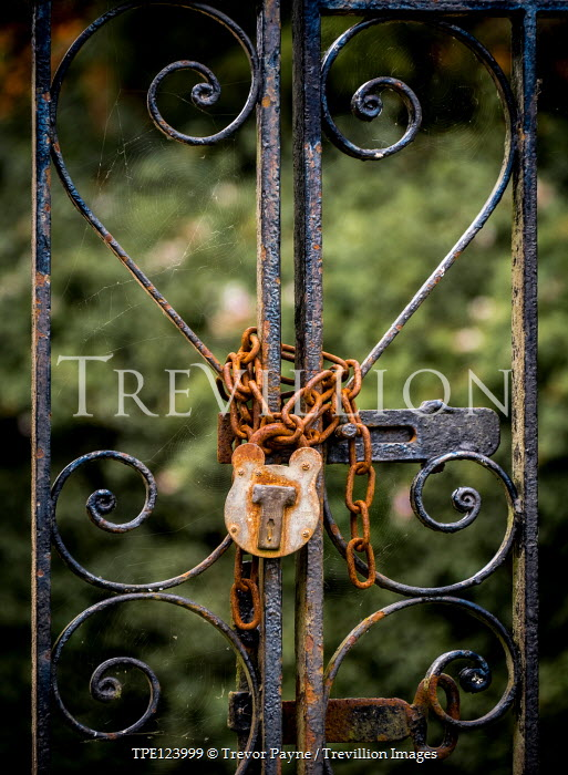 Trevor Payne WROUGHT IRON GATE WITH RUSRTY CHAIN AND PADLOCK Gates