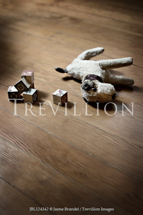 Jaime Brandel TOY DOG AND BUILDING BLOCKS ON FLOOR Miscellaneous Objects