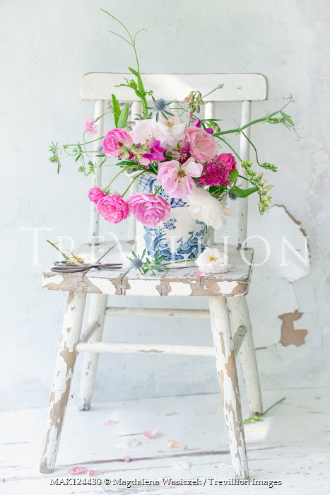 Magdalena Wasiczek PINK ROSES IN JUG ON CHAIR WITH SCISSORS Flowers