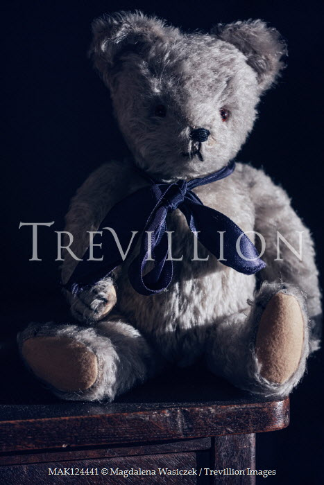 Magdalena Wasiczek TEDDY BEAR WITH SILK BOW IN SHADOW Miscellaneous Objects