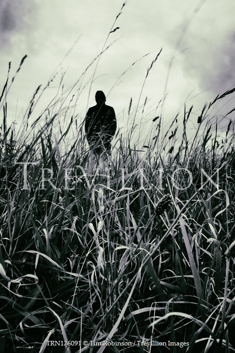 Tim Robinson SILHOUETTED MAN IN HOOD STANDING IN FIELD Men