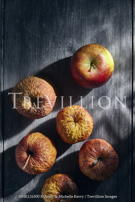 Andy & Michelle Kerry RIPE AND WRINKLED APPLES IN SUNLIGHT Miscellaneous Objects