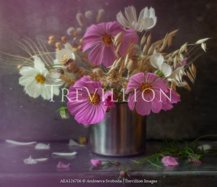 Andreeva Svoboda WHITE AND PINK FLOWERS IN METAL VASE Flowers