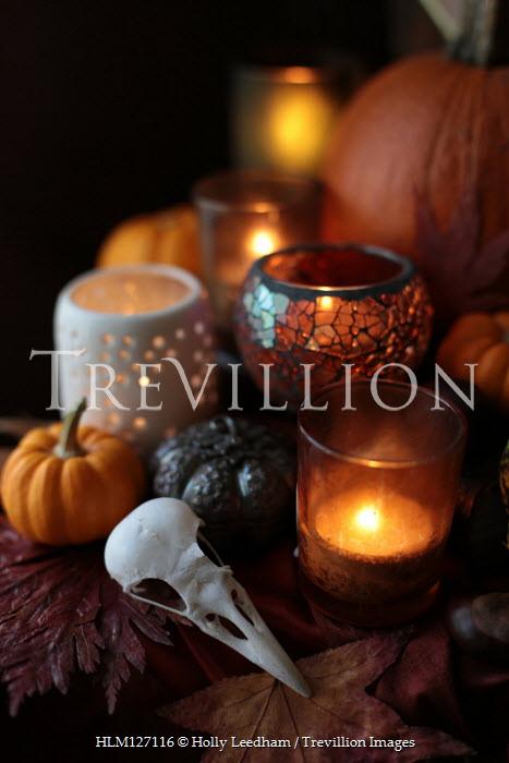 Holly Leedham Bird skull, candles, and pumpkins