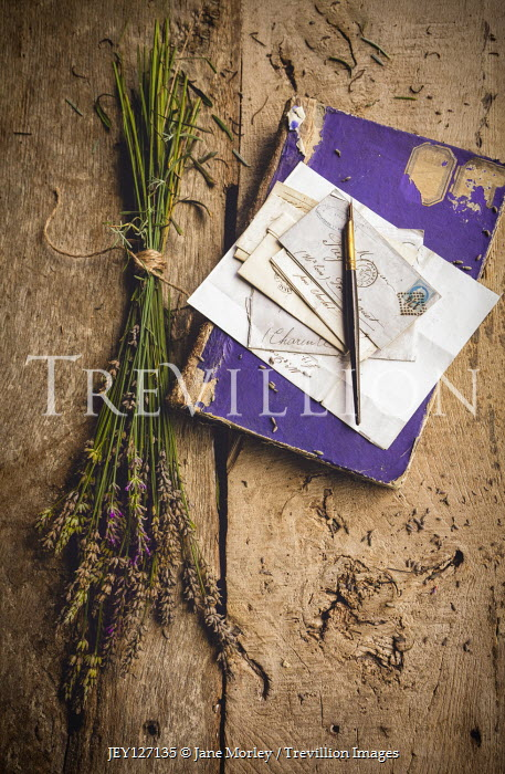 Jane Morley Lavender by fountain pen and letters on book