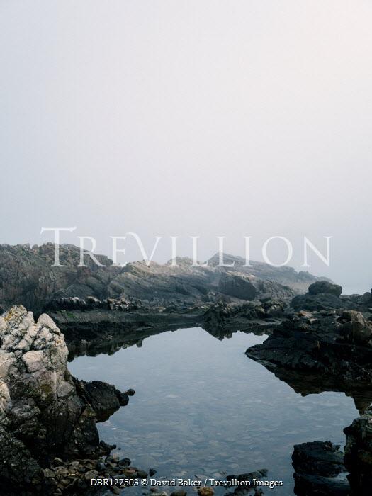 David Baker Rocks and tide pools