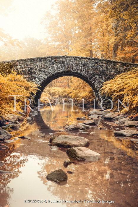 Evelina Kremsdorf Bridge over stream in autumn forest , Sleepy Hollow, New York, USA