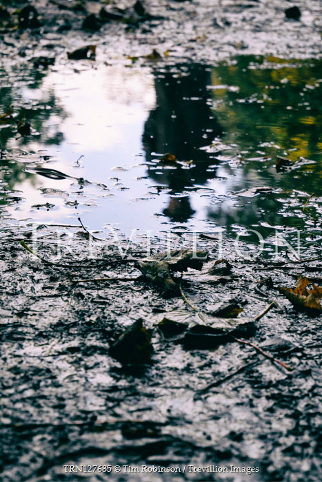 Tim Robinson Reflection of man in hat and coat in puddle