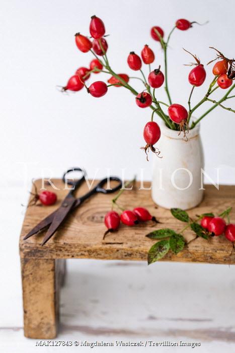 Magdalena Wasiczek Red berries in vase on wooden stool