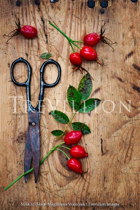 Magdalena Wasiczek Scissors with red berries on wood