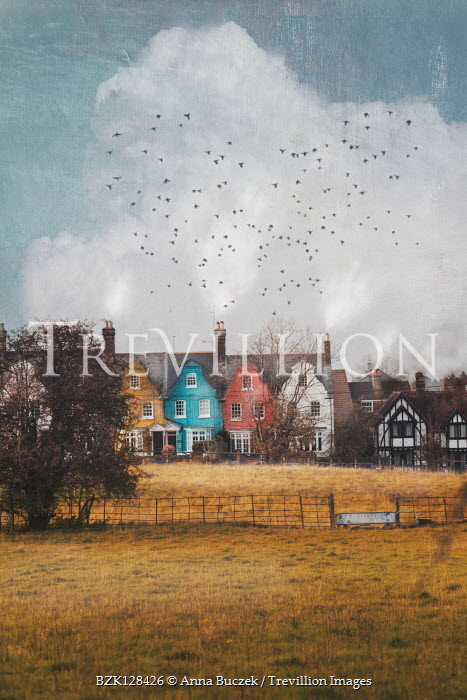 Anna Buczek Birds flying over houses by field
