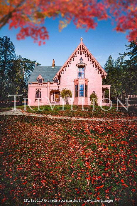 Evelina Kremsdorf Autumn leaves and pink house