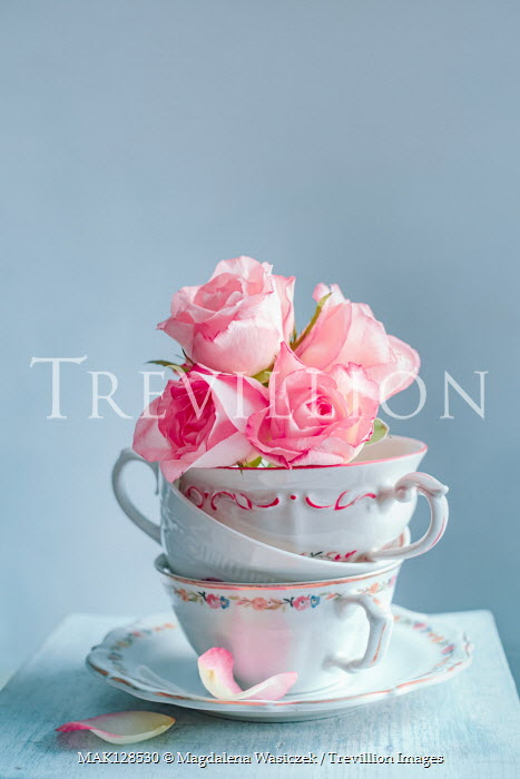 Magdalena Wasiczek PINK ROSES IN STACK OF CHINA TEACUPS Flowers