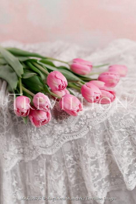 Magdalena Wasiczek PINK TULIPS ON WHITE LACE Flowers