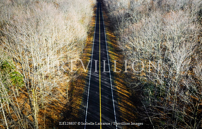 Isabelle Lafrance EMPTY COUNTRY ROAD WITH WINTRY TREES Paths/Tracks