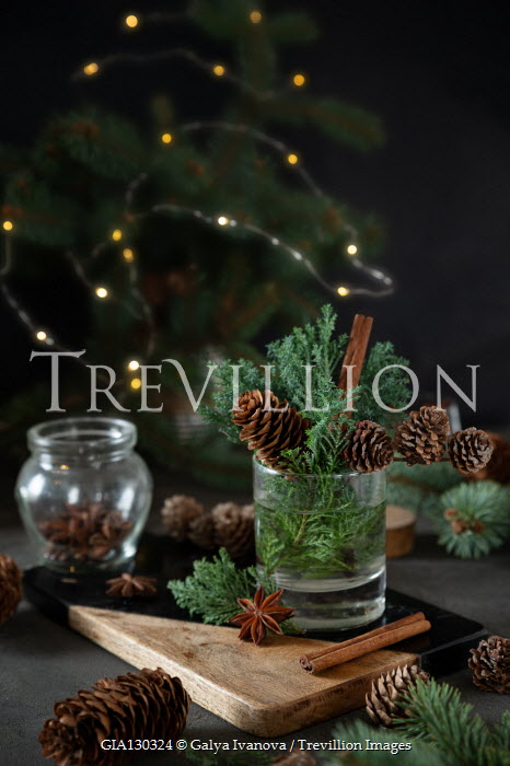 Galya Ivanova CHRISTMAS TREE WITH SPICES AND FIR CONES Miscellaneous Objects