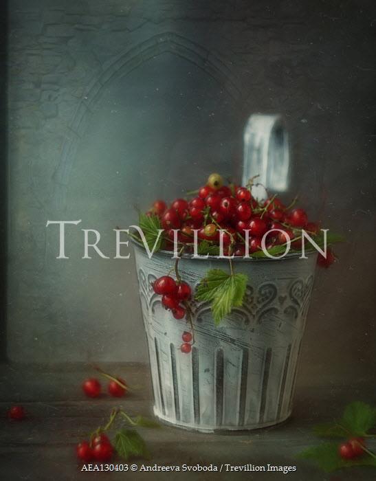 Andreeva Svoboda Red berries in pot