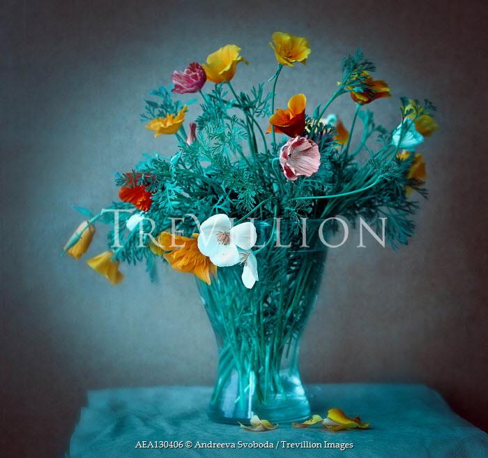 Andreeva Svoboda Flowers in vase