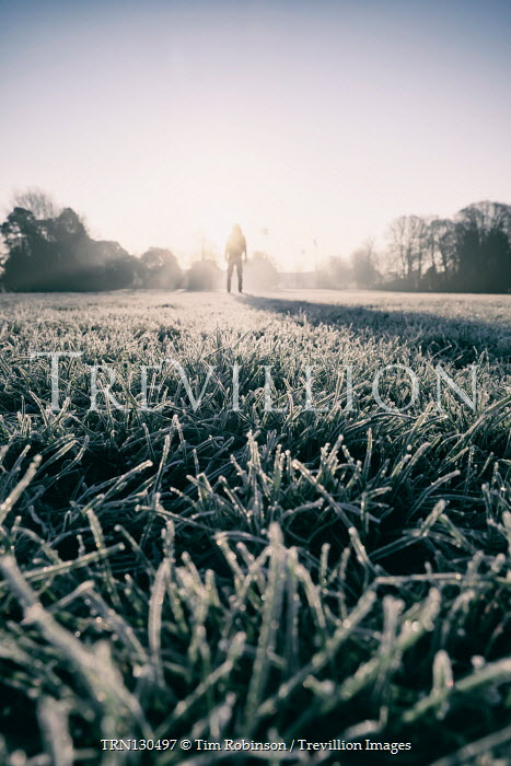 Tim Robinson Frosty grass and man standing in field at sunset