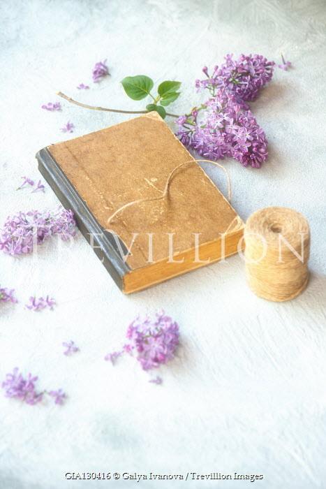 Galya Ivanova Book, string, and purple flowers