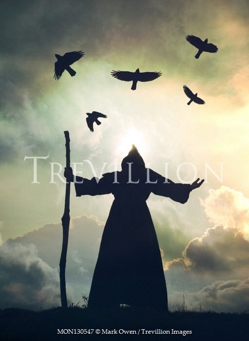 Mark Owen Silhouette of monk with stick under flying birds