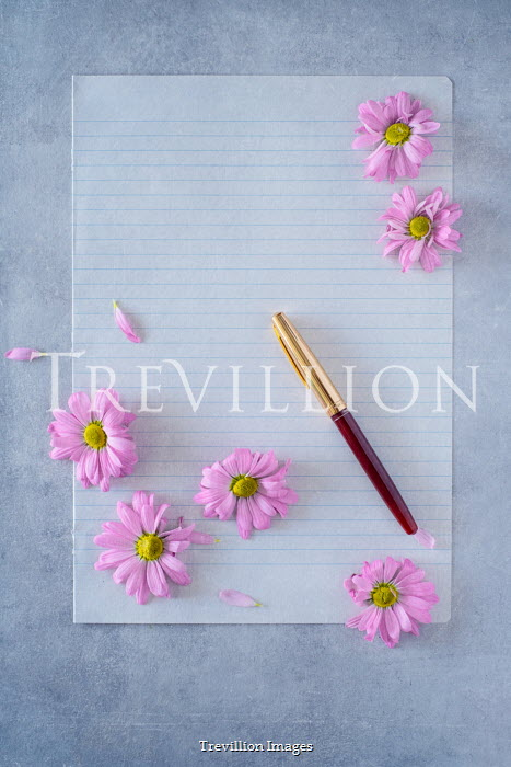 Magdalena Wasiczek PINK FLOWERS ON WRITING PAPER WITH PEN Miscellaneous Objects
