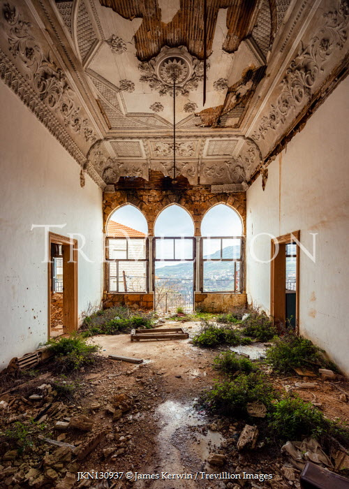 James Kerwin INTERIOR OF DERELICT AND OVERGROWN PALACE Interiors/Rooms