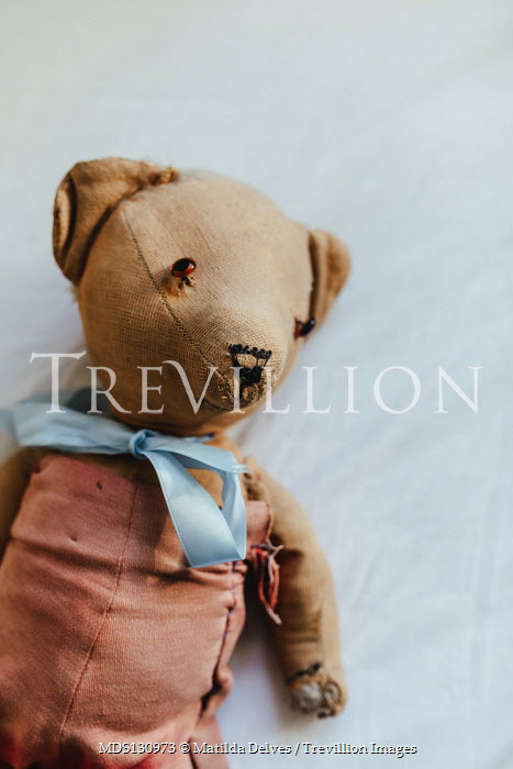 Matilda Delves WORN TEDDY WITH SILK BOW Miscellaneous Objects