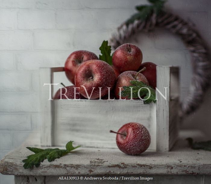 Andreeva Svoboda ICY RED APPLES IN BOX ON TABLE Miscellaneous Objects