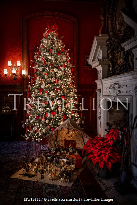Evelina Kremsdorf Illuminated Christmas tree and decorations