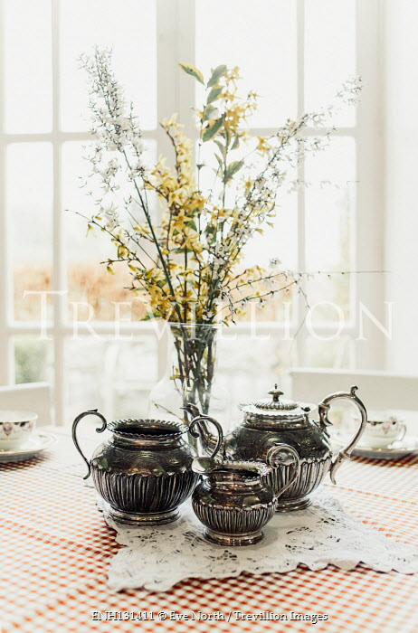 Eve North Tea pots and flowers in vase