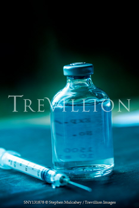 Stephen Mulcahey BOTTLE OF MEDICATION AND SYRINGE Miscellaneous Objects