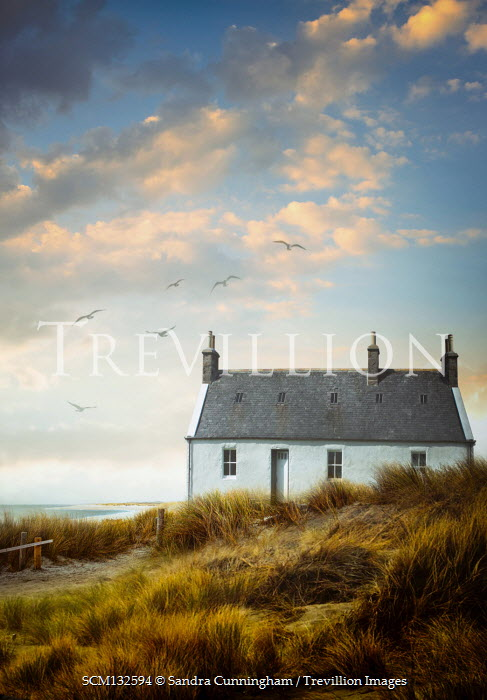Sandra Cunningham WHITE COTTAGE BY SEA WITH DUNES Houses